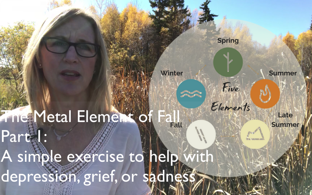 Experiencing depression, grief, or sadness; or want to balance your energy with the fall season?